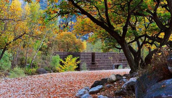 liyuan_library_exterior_verde